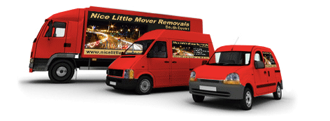 Nice Little Mover Removal Service Vans